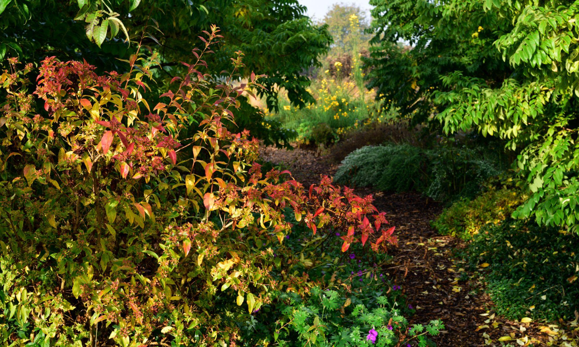 Garten Alst